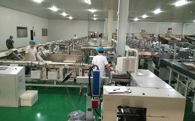 Ordinary plastic package production line